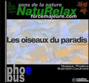 musique de détente avec chant des oiseaux naturelax
