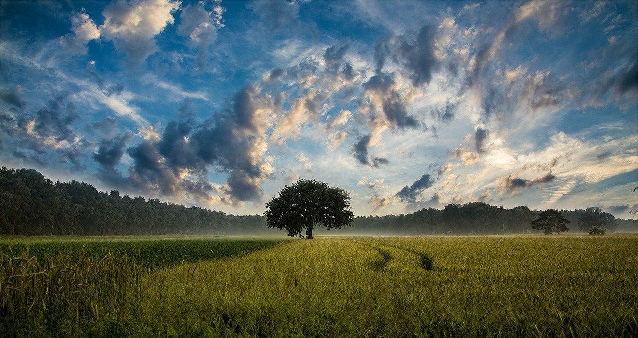 nuages relaxation mp3 gratuit