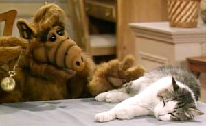 HIDE YOUR CATS EVERYBODY! ALF Is Making A Comeback!