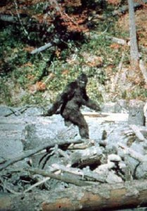 Sasquatch in The Seventies: A Bigfoot Movies Primer