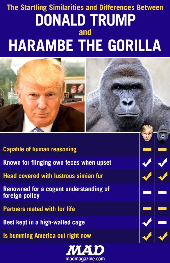 MAD-Magazine-Trump-Harambe-Gorilla_578e557f78d217.29651740