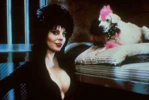 'Elvira, Mistress of The Dark' Limited Collector's Edition Blu-ray Arrives on 4/24/17!
