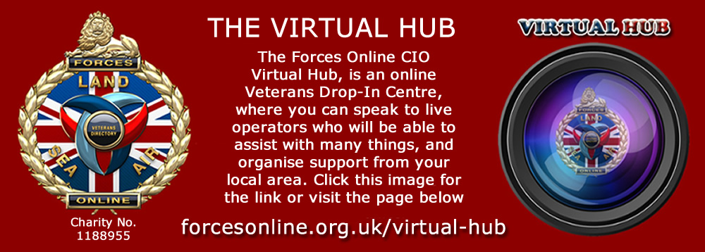 VirtualHub Facebook Page
