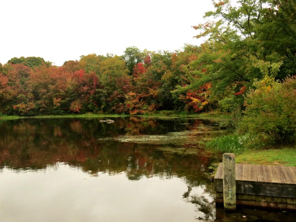 New England e i colori dell'autunno