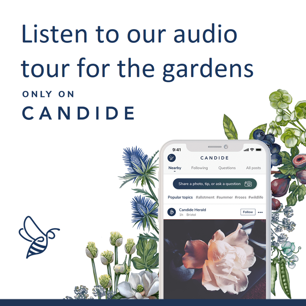 Enjoy our guided audio tour for the garden