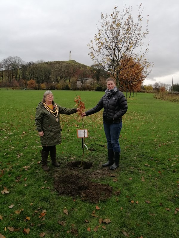 Town Mayor plants first tree in new project to mark National Tree Week