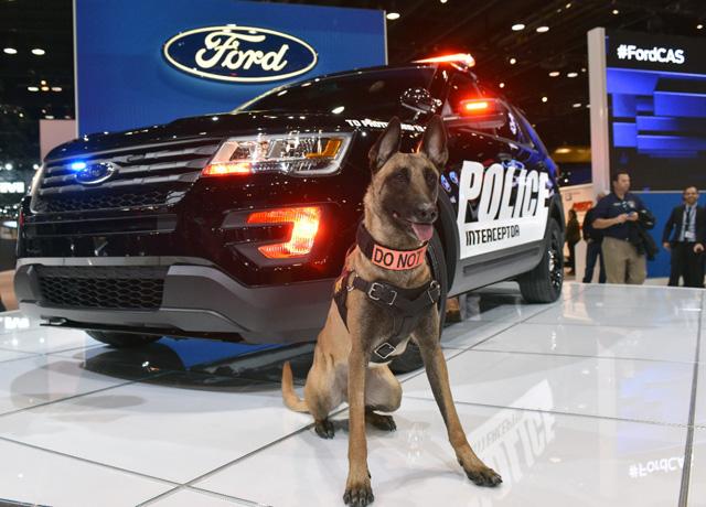 Keegan Ford Police Interceptor Utility