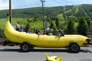 ford-banana-car (3)