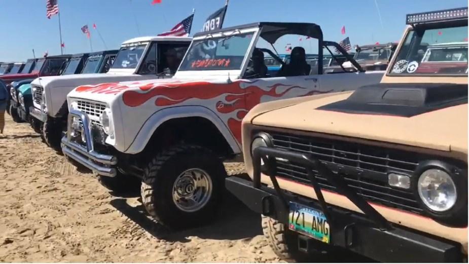 Bronco Fest