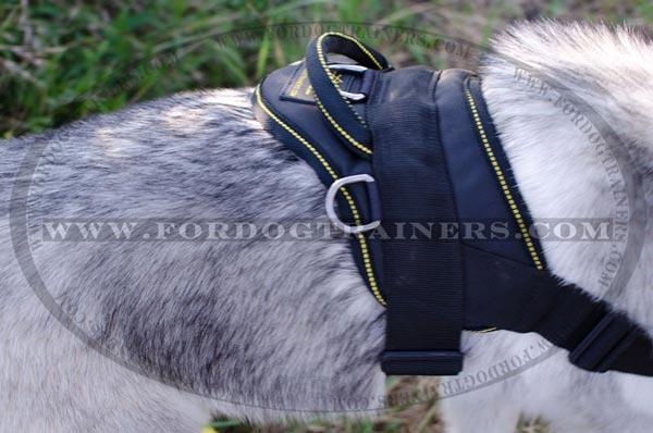 Siberian Husky Nylon Dog Harness Pulling Multi Purpose