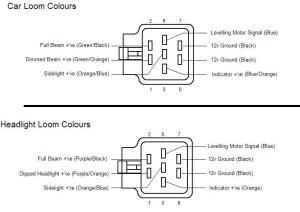Xenon OEM Headlight Retrofit Guide  wwwFordWikicouk