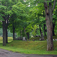 Cemetery Tree Management Services
