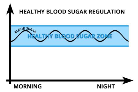 регуляция уровня сахара в крови