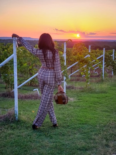 Blue Ostrich Winery Vineyard Best Wineries to Visit in North Texas Wine Country