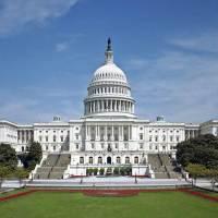 Dual Citizens in Congress?  Nós precisamos saber