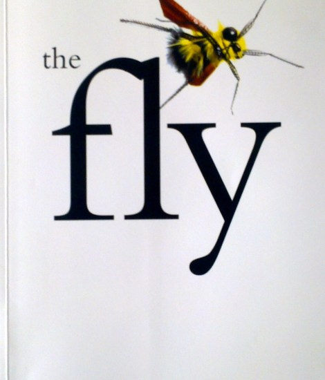 Andrew Herd - The Fly