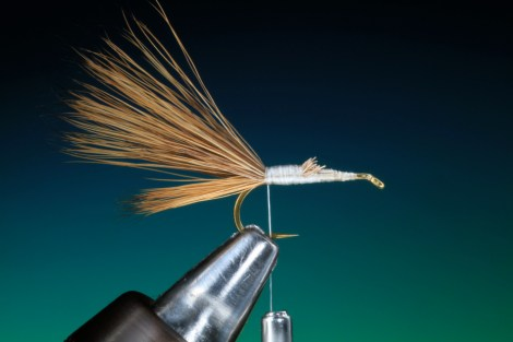 Forelle Äsche Fliegenbinden Barry Ord Clarke Humpy8