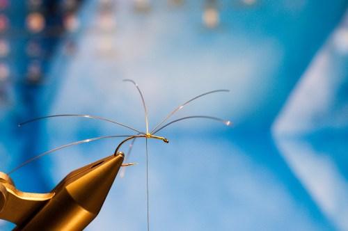 Forelle Äsche Fliegenbinden Schnake Crane Fly Daddy Long Legs18