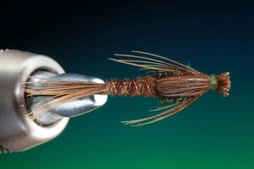 BOC PTN Pheasant Tail 20