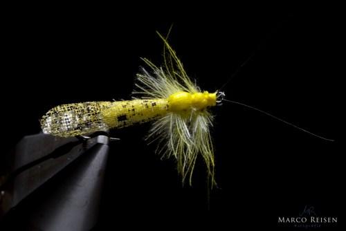 Marco Reisen Yellow Sally Bindeanleitung (18)