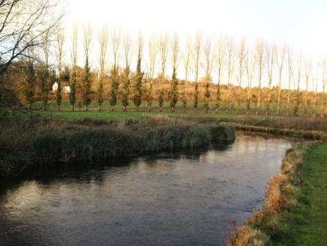 Fliegenfischen_River_Test_Herbst_Aesche15