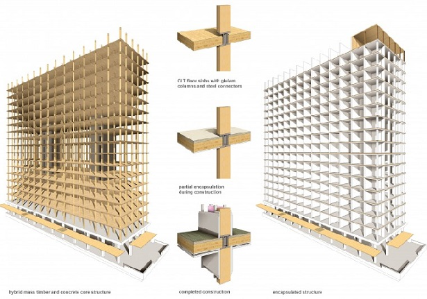 Word's tallest wood building