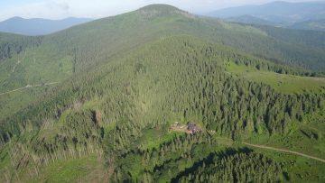Sadzenie lasu w górach.