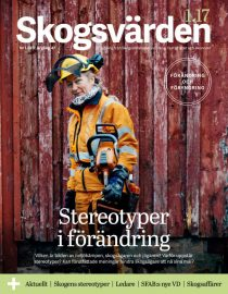 Leśne stereotypy szwedzkie.