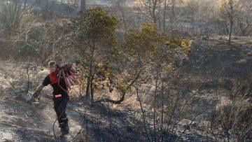 Francuskie pożary lasu jeszcze trwają.