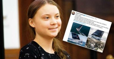 Greta Thunberg idol