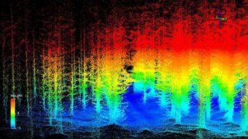 Laserowy skaning lasu