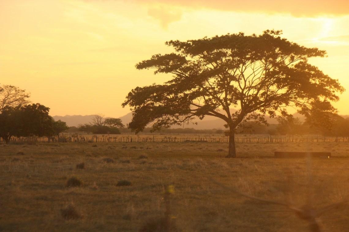 La naturaleza de Costa Rica (2/5): historia del paisaje