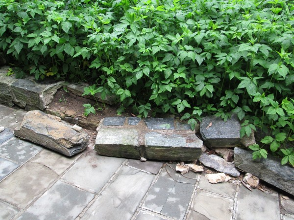36th park broken flagstones