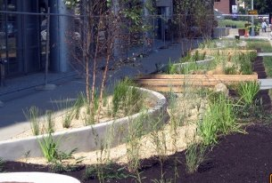 Bioretention at 1200 First St, NE. (photo provided by DDOE)