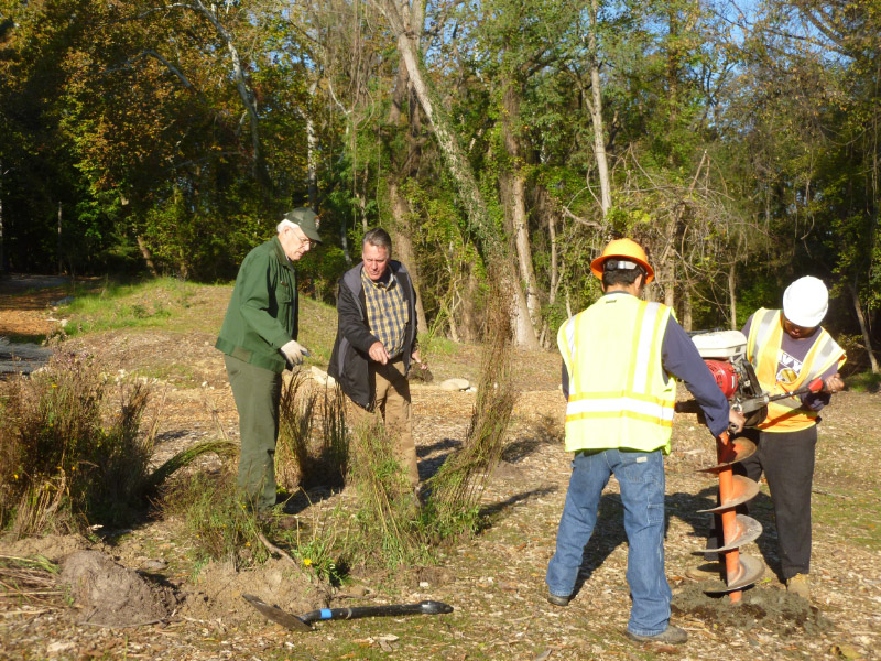 A 2014 tree planting at Broad Branch Stream.