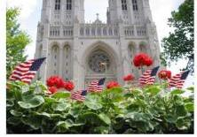 Cathedral and Geraniums and flags for web