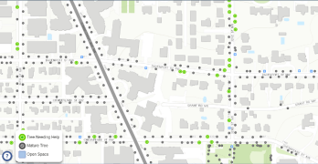DDOT has an app for summer tree watering in DC. How would you improve it?