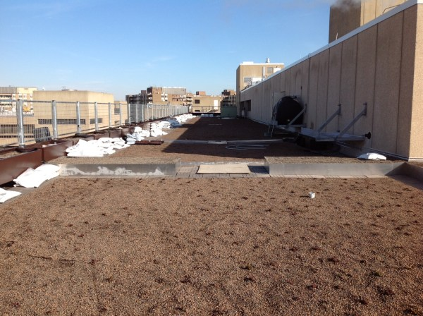 A cistern installed next to the penthouse holds rainwater harvested from penthouse roof. (Photo courtesy of CAUSES/UDC)