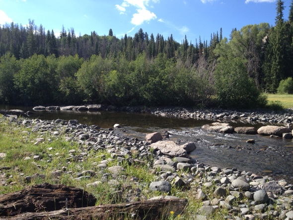 A tributary of the Little Snake River and a prime fishing spot.