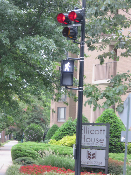 The HAWK signal at Connecticut and Ellicott. Cars must stop when the light is a solid red.