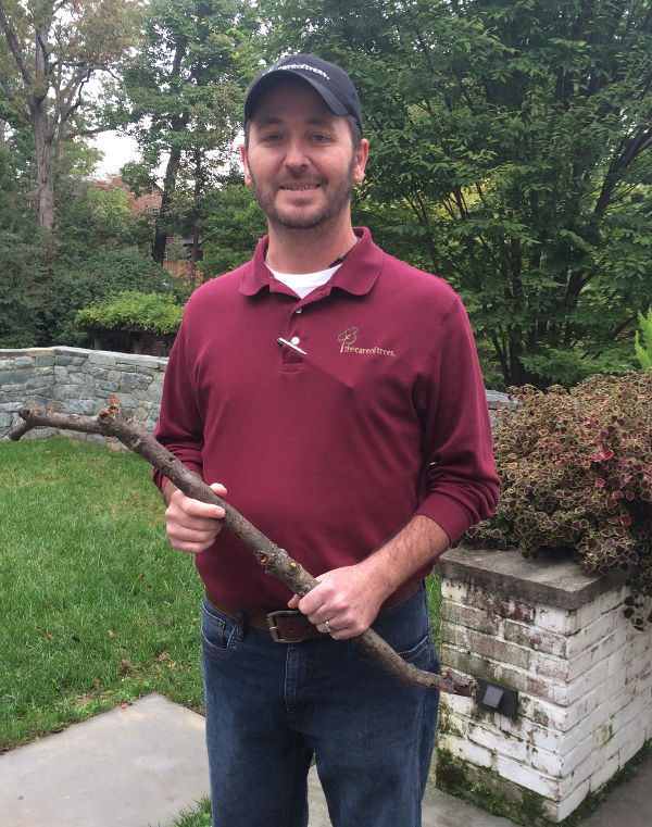 Shawn Siefers is an arborist with The Care of Trees.