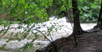Photos and videos: Overflowing Soapstone and Broad Branch streams after a record stretch of rainfall