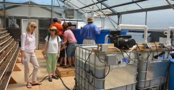UDC celebrating new aquaponics system with April 25 ribbon-cutting