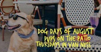 "Thursdays in August: ""Pups on the Patio"" happy hours at Van Ness restaurants"