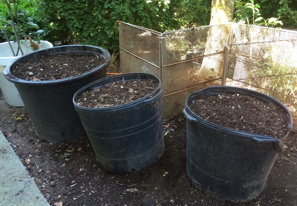 The finished compost.