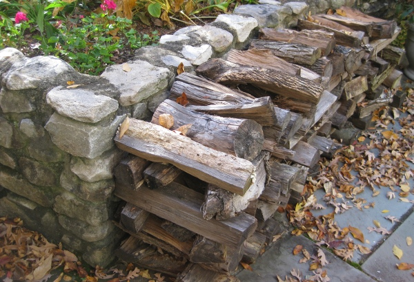 Cozy haven - a firewood stack. (photo by the author)