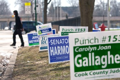 A row of campaign signs line the sidewalk outside the polling place at Oak Park and River Forest High School. (David Pierini/staff photographer)