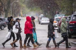 Wine walk attendees cross the street in the snow and rain on April 27, during the annual Spring Wine Walk and Shop on Madison Street throughout downtown Forest Park. | ALEXA ROGALS/Staff Photographer