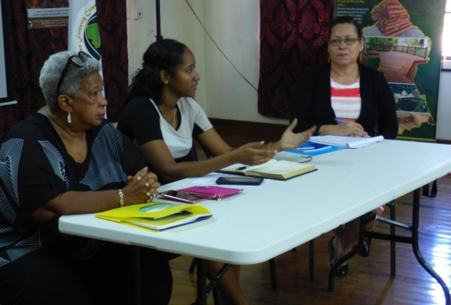 FCPF's Project Assistant Michelle Astwood (second from left) responds to questions raised during the workshop. At left is GFC's Chairman Jocelyn Dow and (at right) Programme Coordinator of the Ministry of Indigenous Peoples' Affairs Jude Da Silva.