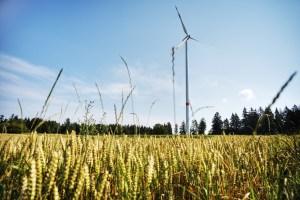 windmill in a wheat farm